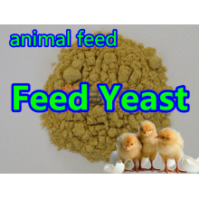 Feed Yeast Powder for Feed Grade